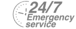24/7 Emergency Service Pest Control in Holland Park, W11. Call Now! 020 8166 9746