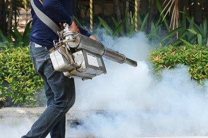Pest Control in Holland Park, W11. Call Now 020 8166 9746