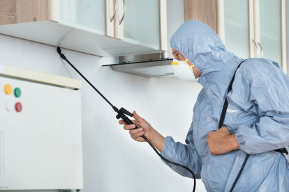 Home Pest Control, Pest Control in Holland Park, W11. Call Now 020 8166 9746